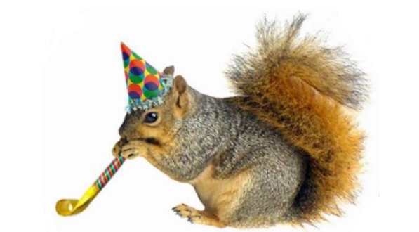 party_squirrel